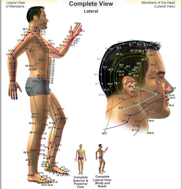 Mapa de Meridianos de acordo com a acupuntura (3/6)