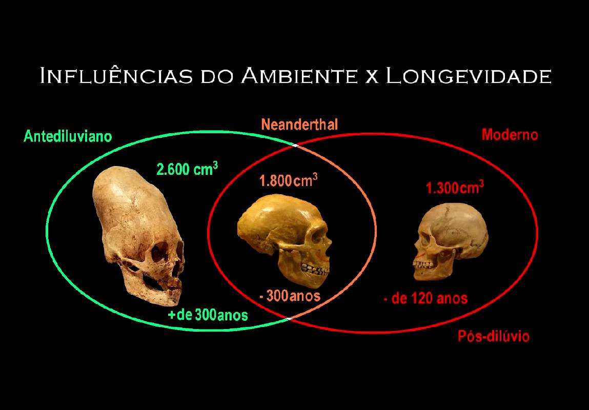 cranios 1