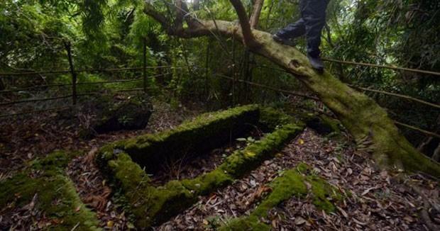 Caixões de pedra de mil anos são encontrados nas Filipinas. Alguns dos caixões chegam a medir seis metros de comprimento. Veja mais em http://wp.me/peNta-Ss.