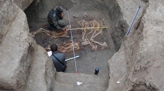 Esqueletos humanos gigantes são encontrados em um túmulo milenar ao norte do Cáucaso. Veja mais em: http://wp.me/peNta-22b.