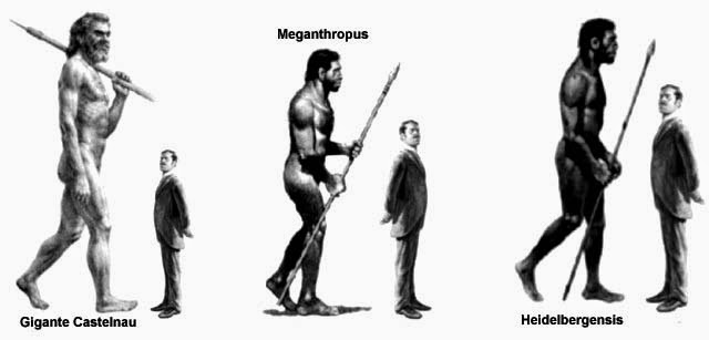 a history of the neanderthal species and the cause of extinction Neanderthal extinction essay  cause of their extinction  but neanderthals and modern humans were separate species they argue that the neanderthal line was a.