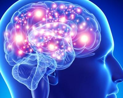 mapa-do-cerebro