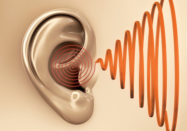auditivo2